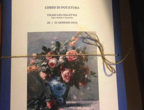 """CORSO DI POTATURA 2016"""